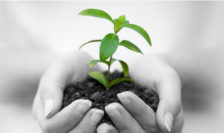 Corporate and Social Responsibility (CSR Green Credentials)