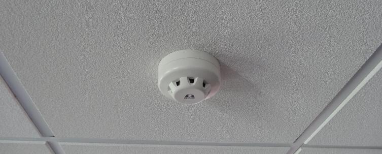 Fire Alarm System service
